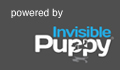 Invisible Puppy Online Strategy & Marketing Agency