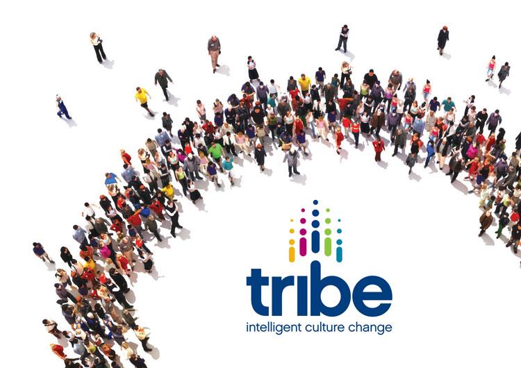 Tribe Culture Change brochure download