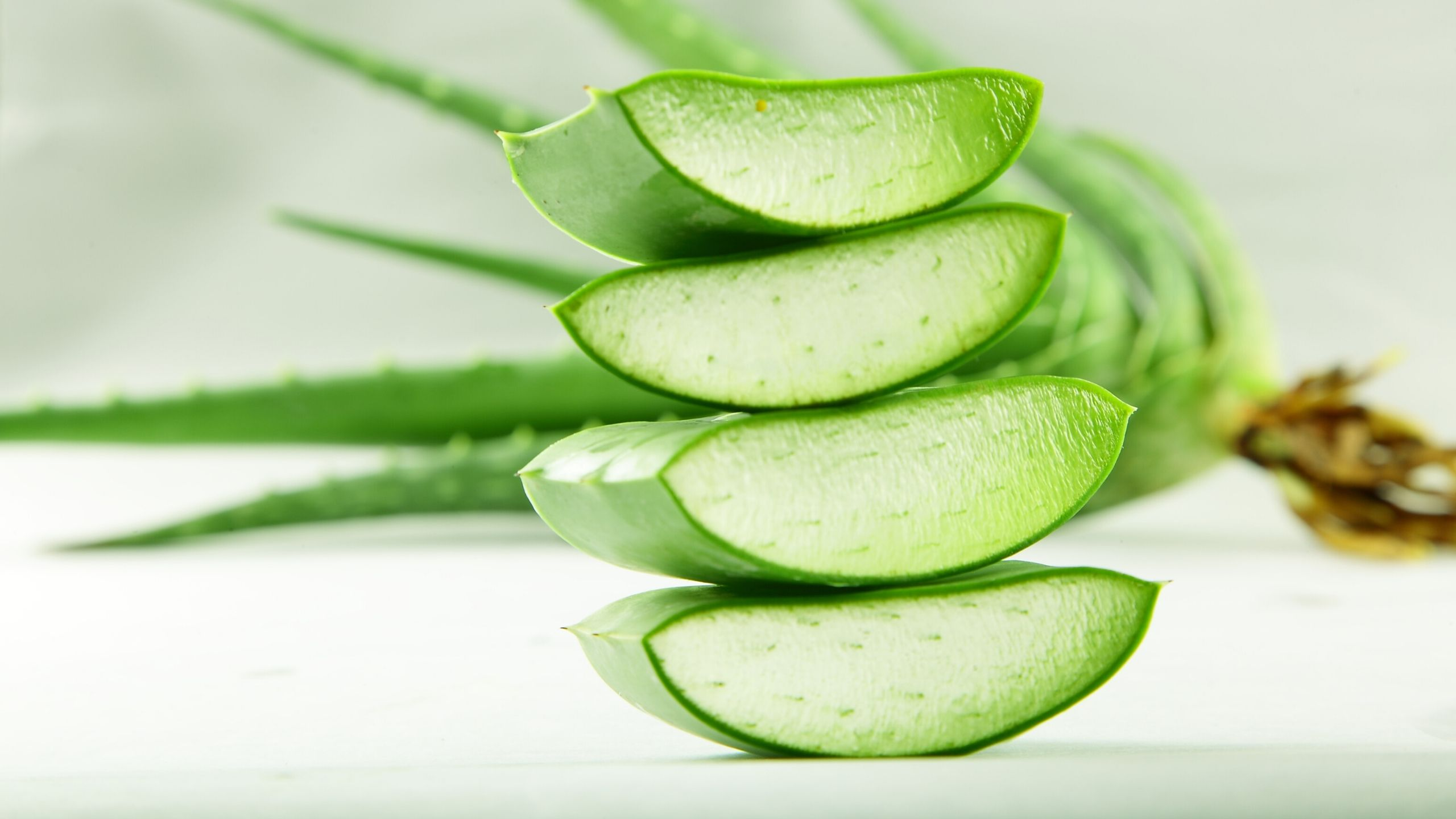 Aloe Vera for Hair Related Problems