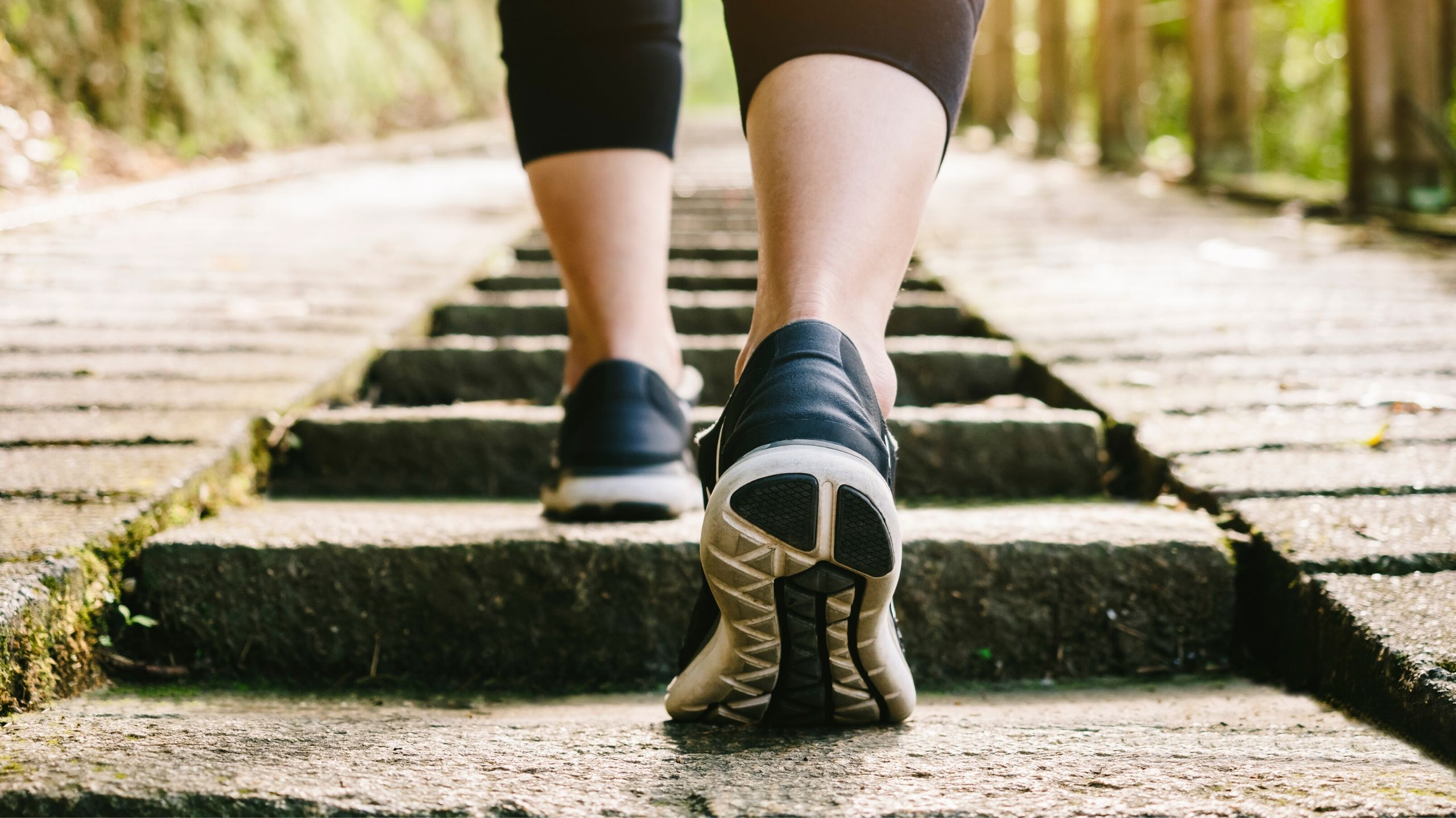 Morning Walk Benefits For Health and Fitness