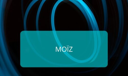 The Diffracted Word SME Moïz