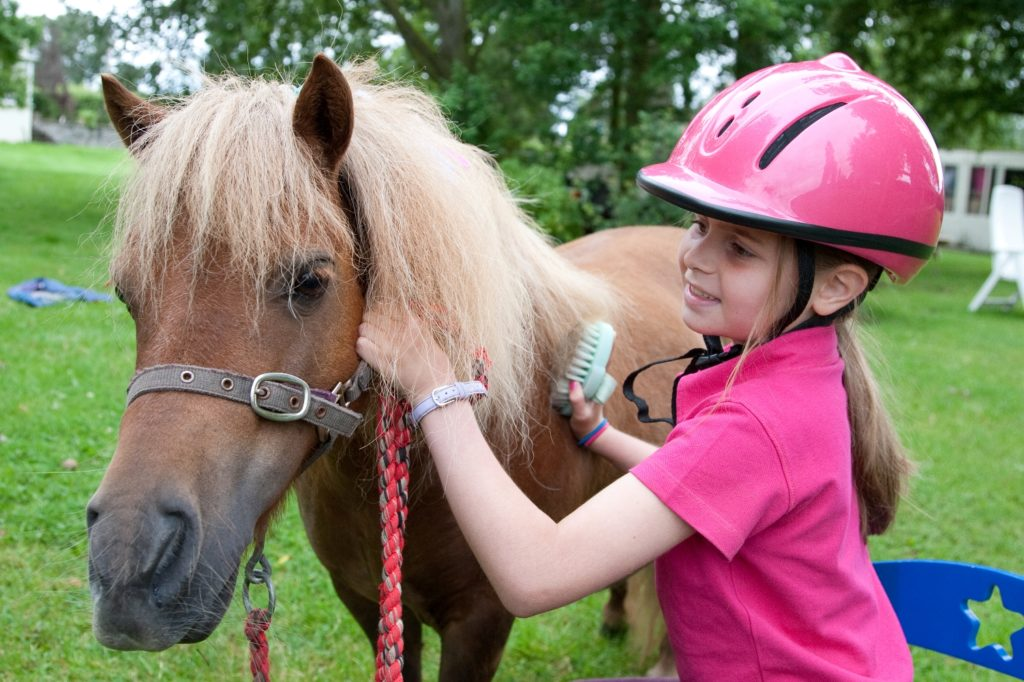 pony rides for kids