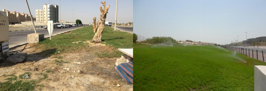 SAAB RDS - green gardens in desert