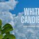WHITE CANDIES