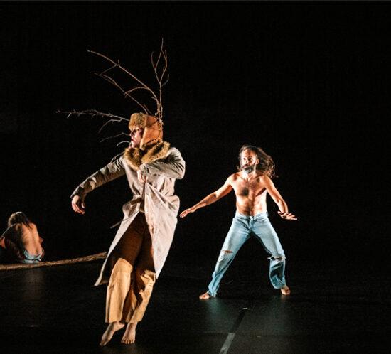 babirusa-danza-agenda