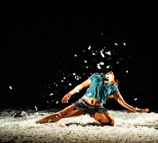 brea-y-plumas-babirusa-danza1