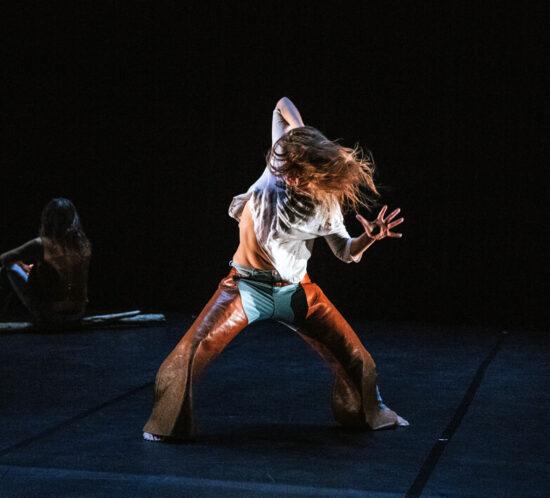 no-title-animal-babirusa-danza