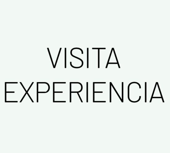 VISITA-EX