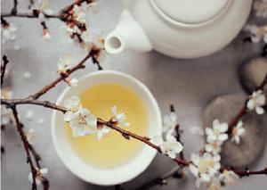 té blanco té de la belleza