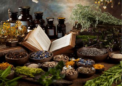 Curso plantas medicinales Barcelona