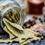 taller de plantas medicinales en barcelona