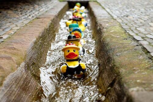 Edinburgh drain repairs