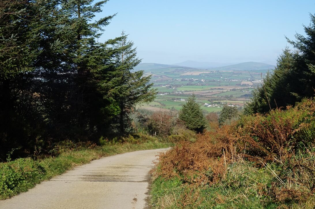 New trails added to the Walks Scheme
