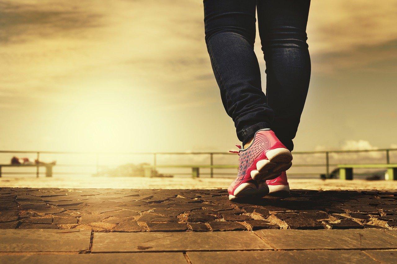 In Praise of Walking book steps up