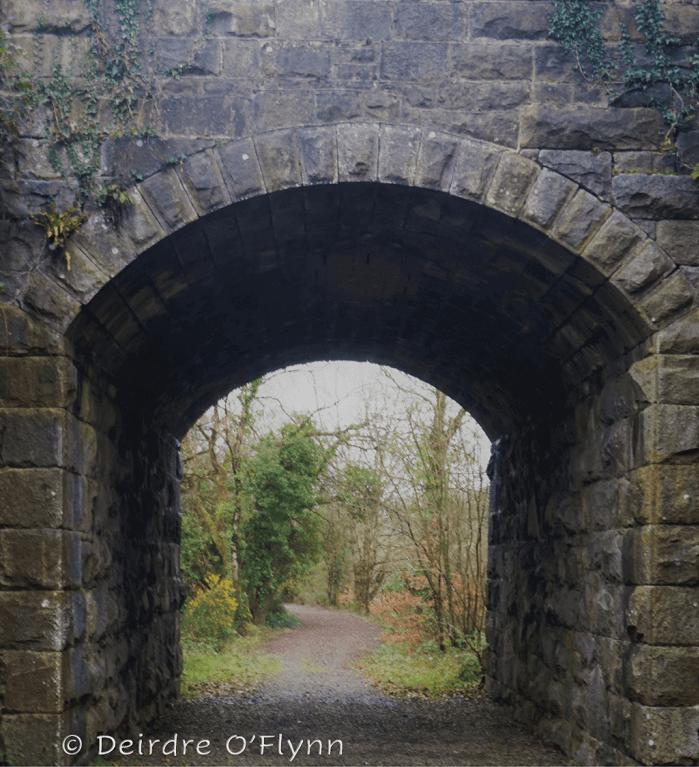 Railway Walk, Tomnafinnoge Woods