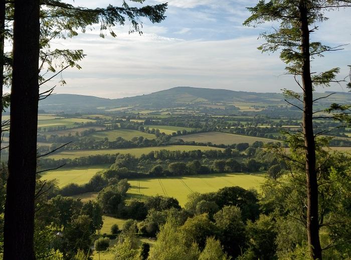 mindful views Coolmelagh