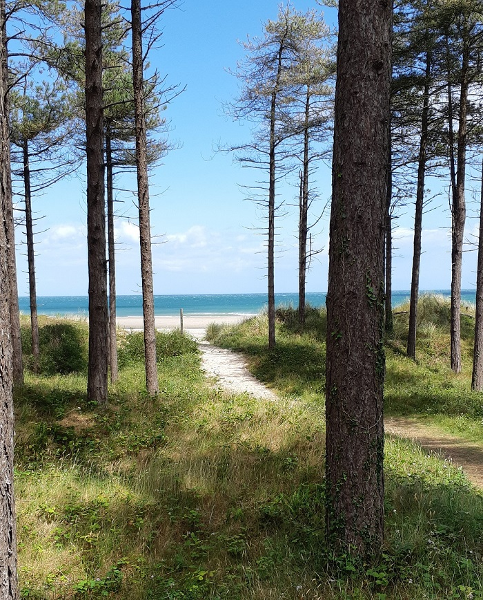 Curracloe Beach and Raven Nature Reserve