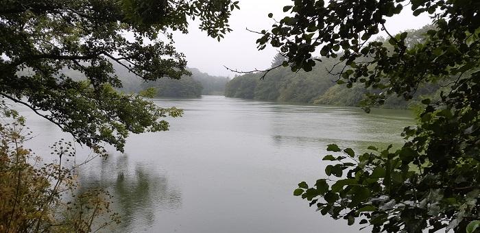 Johnstown Castle lower lake