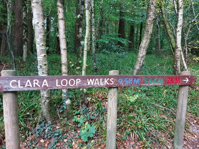 clara vale trailhead a mindful walker deirdre o'flynn