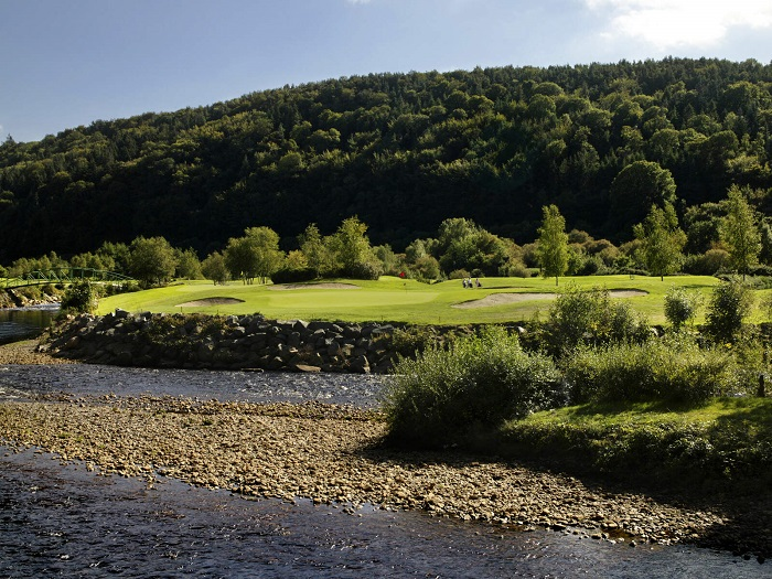 Trees in the background of Woodenbridge Golf Club