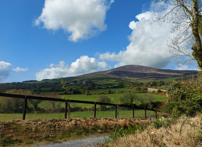 View of the Blackstairs mountain from Kiltealy walking trail