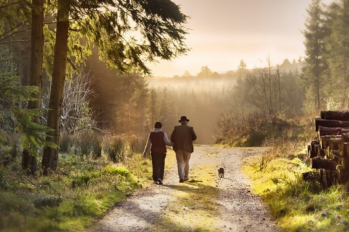 Slieve Bloom, Offaly, mindful walking
