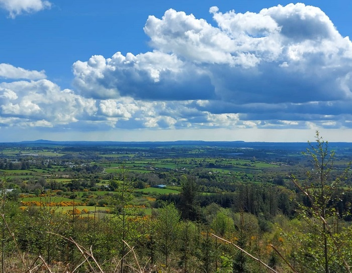 Views of County Wexford on Cullentra Trail, Kiltealy