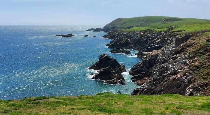 Saltee Islands, cliffs, sea