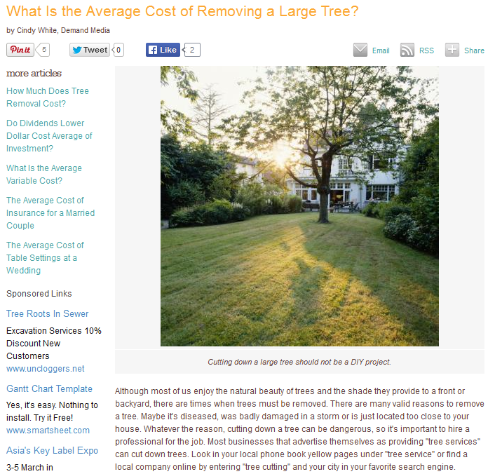 what-is-the-average-cost-of-removing-a-large-tree