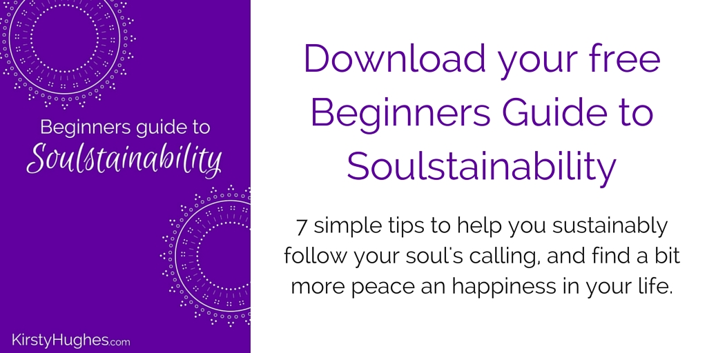 Download your free Beginners Guide to Soulstainability