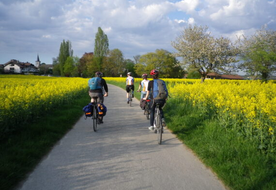 Cyclists riding along a bikeway surrounded by flowers in bloom in the French Alps