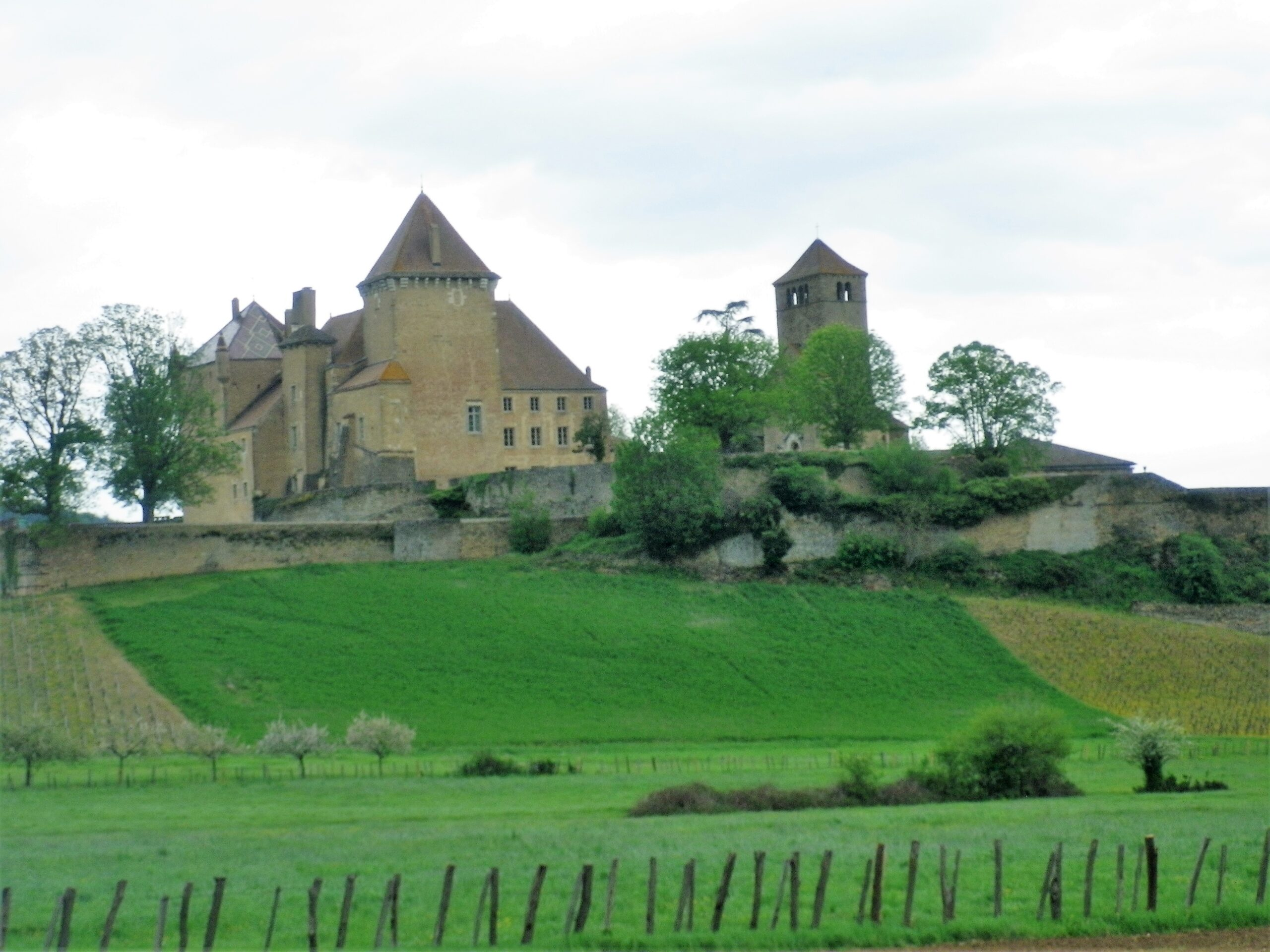 Beaujolais Cycling