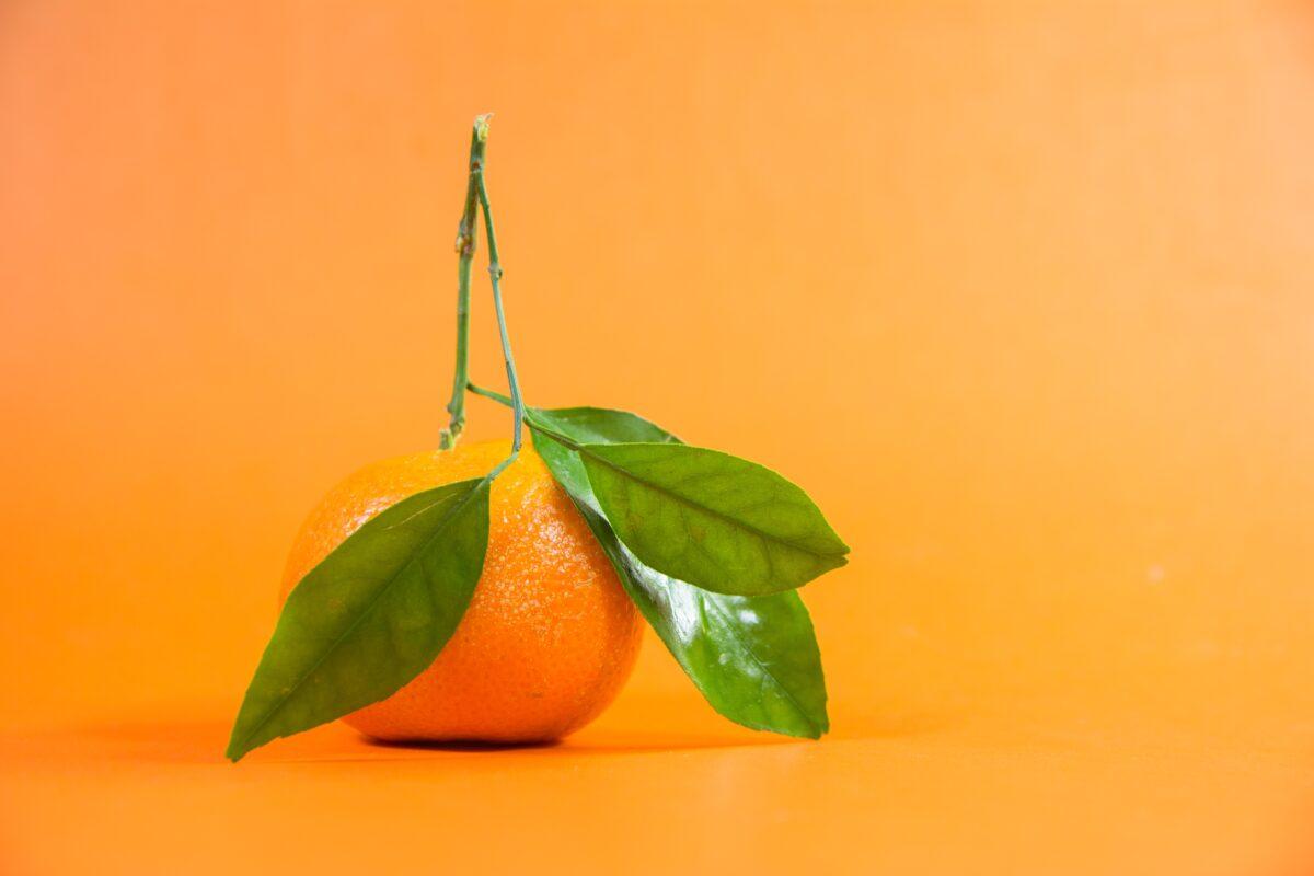 Orange on a orang background