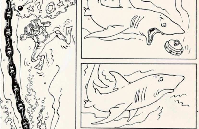 Tintin Herge Red Sea Sharks
