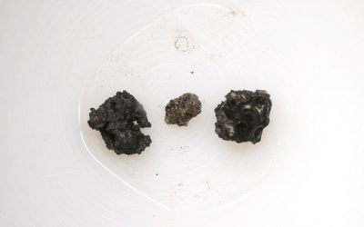 The three tiny moon rocks sold for a huge $855,000