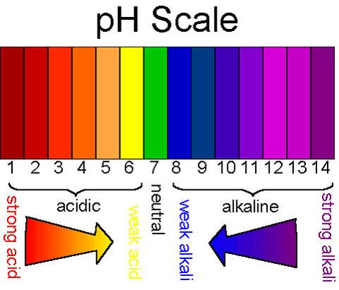 What the pHeck? pH scale
