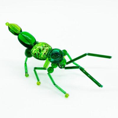 Fanny the Fat Legged Flower Beetle
