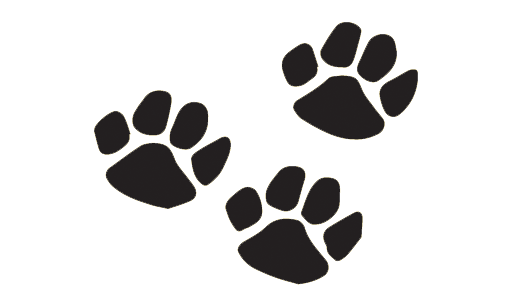 Maggie's foods for pets paw prints