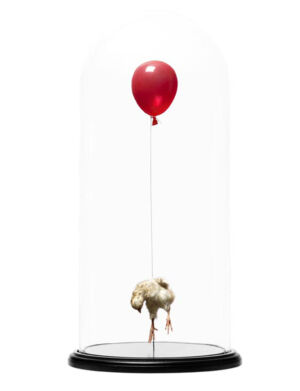 The Wick - Still Birth (Red), Polly Morgan
