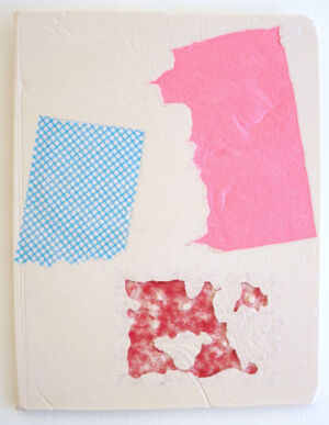 The Wick - Domestic Bliss, Scarlett Bowman  Fragment red blue pink  Composite Mixed-Media  35 x 28 cm