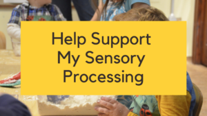 Help support my sensory processing online course autism