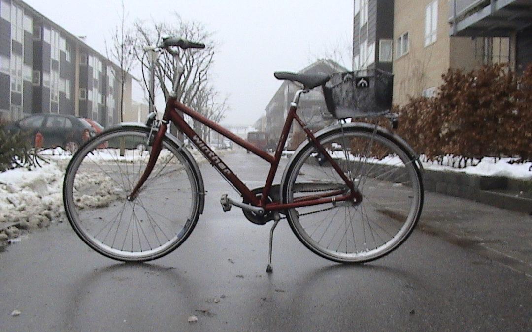 سائق الدراجة العتيقة