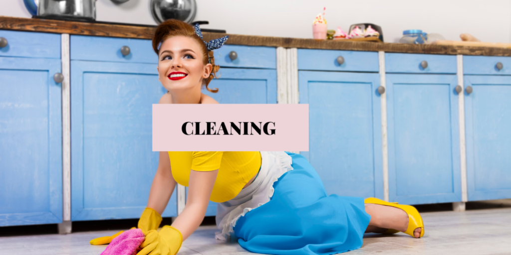 retro housewife CLEANING