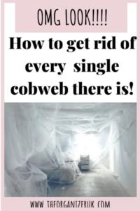 get rid of cobwebs