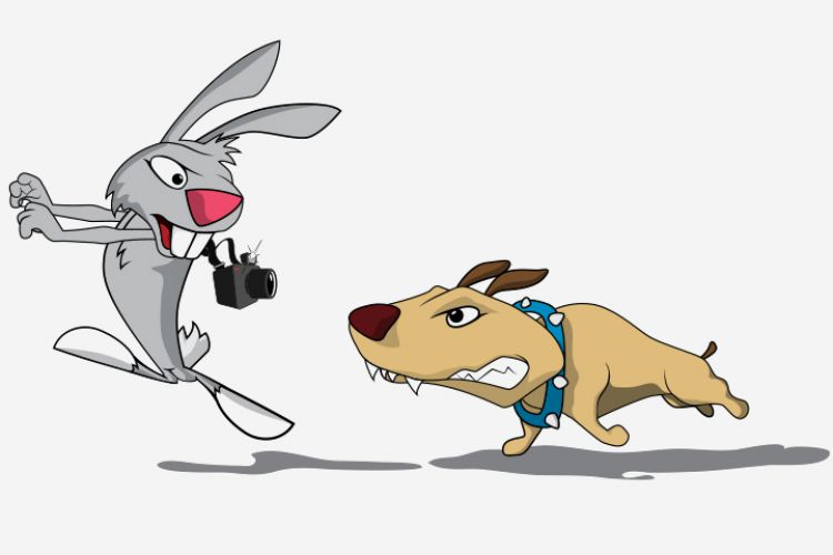 hare and the hound