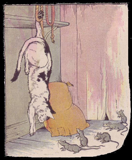 The Cat And The Rat Story