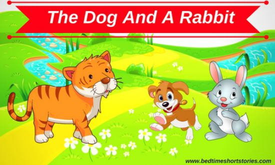 short animal stories with moral