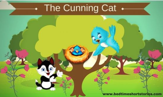 the cunning cat story