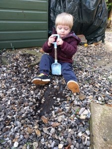 Digging for worms, as you do