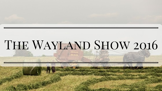 The Wayland Show 2016